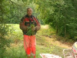 un bouquet d'herbe pour paulo
